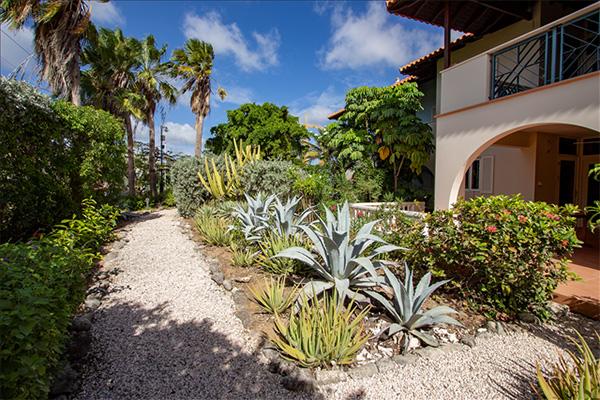 Caribbean-Dream-tuin